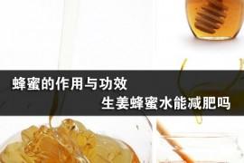 蜂蜜的作用与功效 生姜蜂蜜水能减肥吗