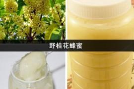野桂花蜂蜜